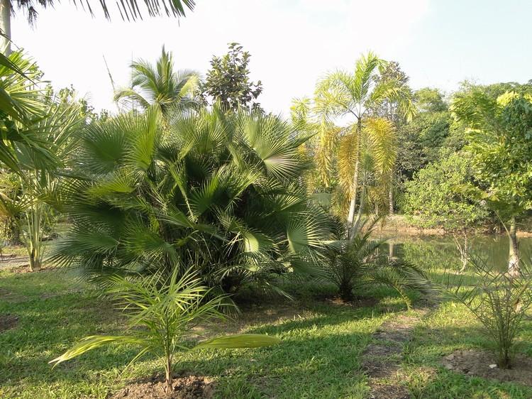 2011-12_020.jpg