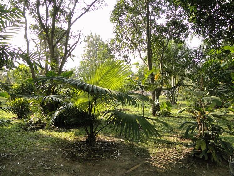 2011-12_036.jpg