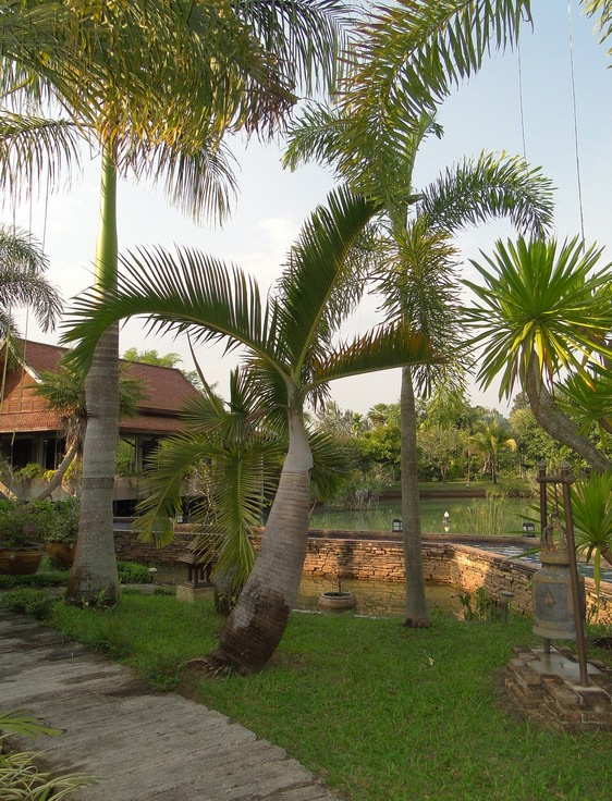 2011-12_068.jpg